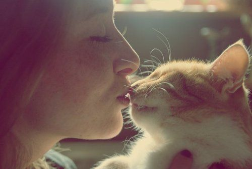 kedi kızı öpüyor