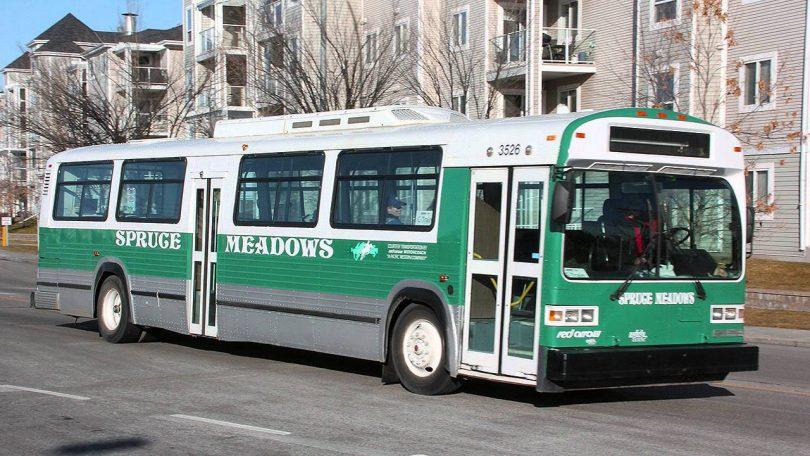 Rüyada Belediye Otobüsüne Binmek