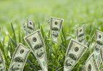 Rüyada Yeşil Para Görmek