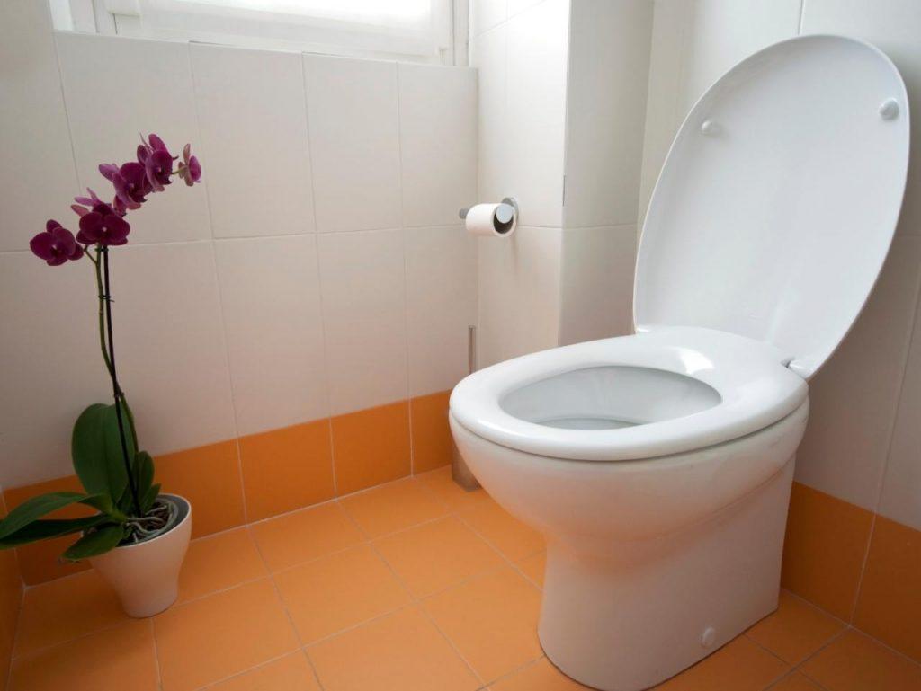 Rüyada Evde Tuvalet Aramak ve Bulamamak