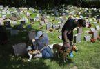 Rüyada Mezarlıkta Köpek Kovalaması