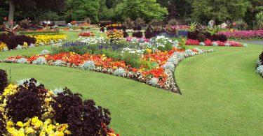 Rüyada Rengarenk Çiçek Bahçesi Görmek