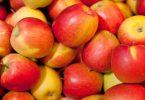 Rüyada Büyük Elma Görmek