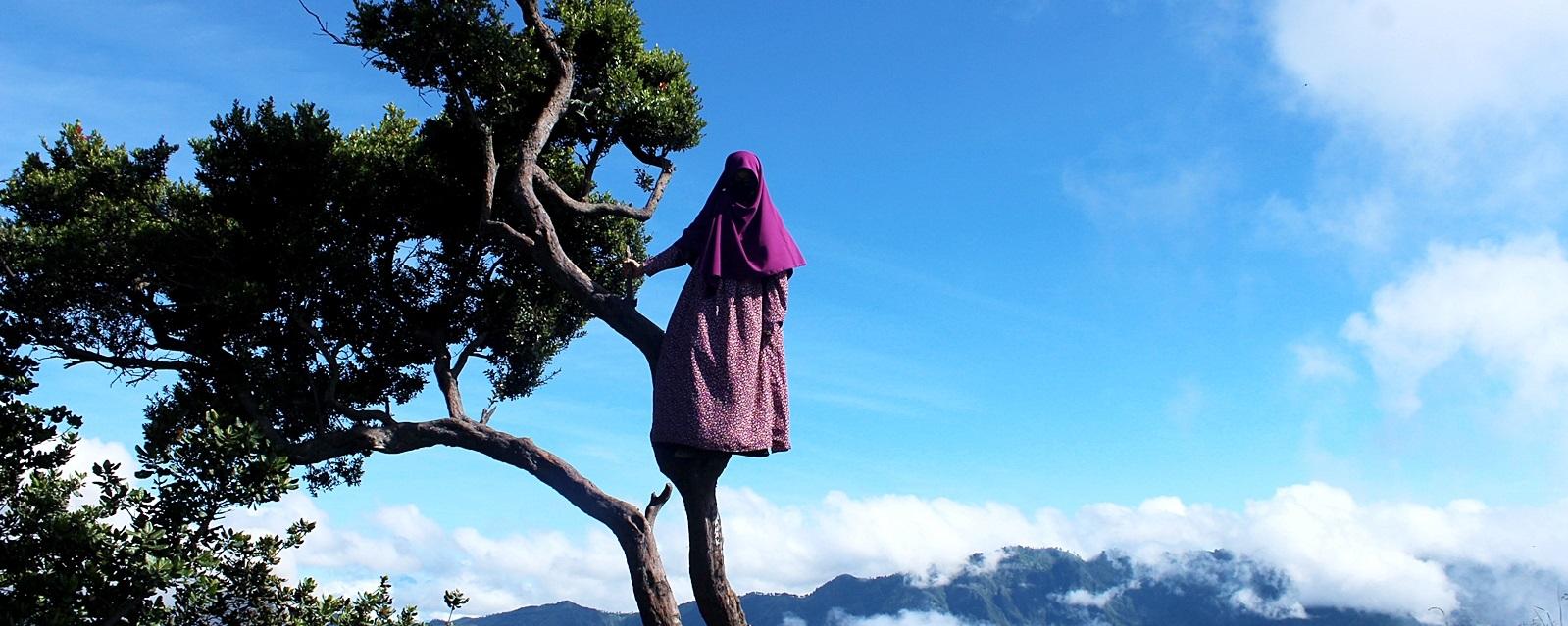 Rüyada Ağaca Tırmanmak Ne Demek Rüya tabiri