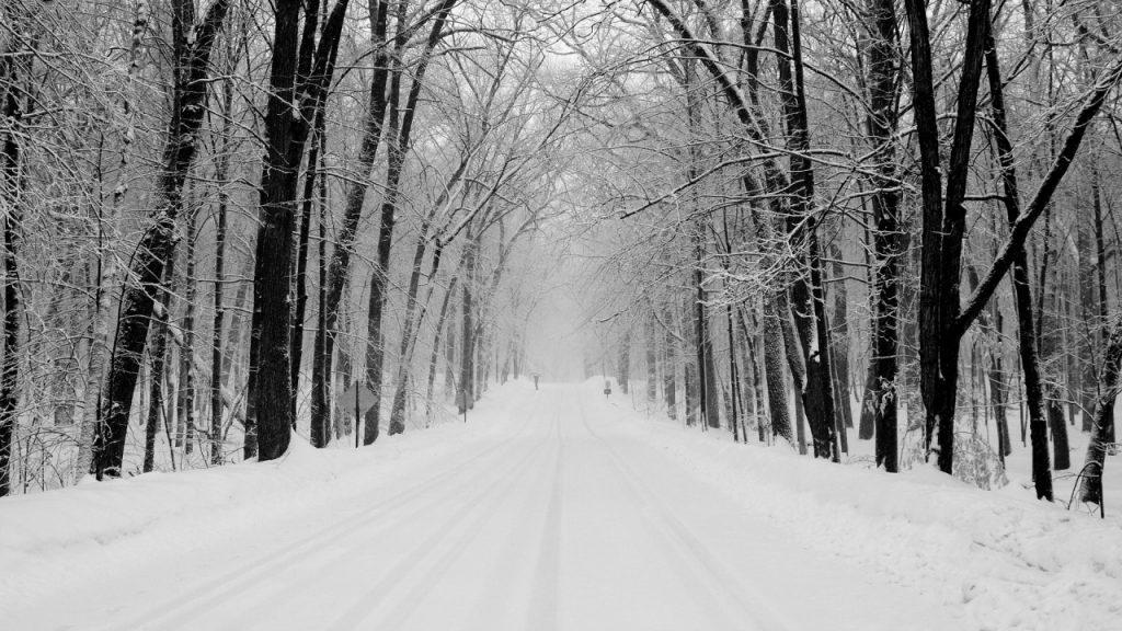 Rüyada Karlı Yolda Yürümek