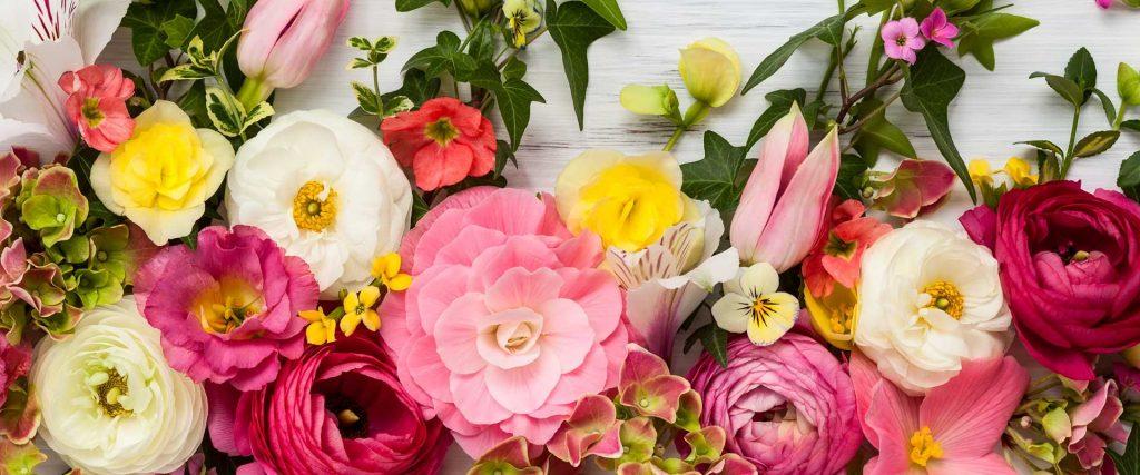 Rüyada Salon Çiçeği Buketleri Görmek
