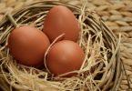 Rüyada Büyük Yumurtalar Görmek