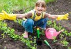 Rüyada bahçe ilaçlamak