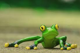 Rüyada Büyük Yeşil Kurbağa Görmek