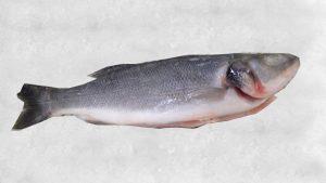 Rüyada Levrek Balığı Yediğini Görmek