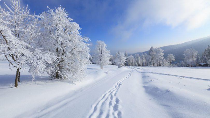 Rüyada Zamansız Kar Görmek