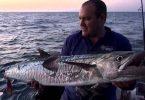 Rüyada Denizde Büyük Balık Görmek