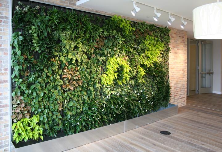 Rüyada Yeşil Duvar Görmek ve Eski Olması