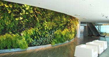 Rüyada Yeşil Duvar Görmek
