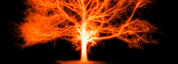 Rüyada Büyük Ağaçların Ateşte Yandığını Yakından Görmek