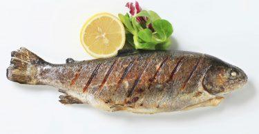 Rüyada Pişmiş Büyük Balık Görmek