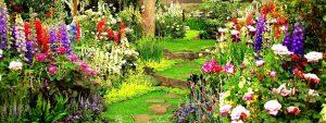 Rüyada Bahçede Çiçek Toplamak