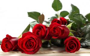Rüyada Çiçek Gül Koklamak