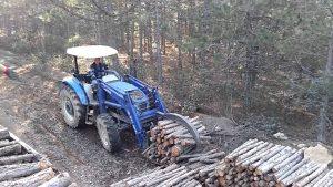 Rüyada Ormanda Odun Kesmek