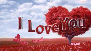 Rüyada Seni Seviyorum Canım Demek
