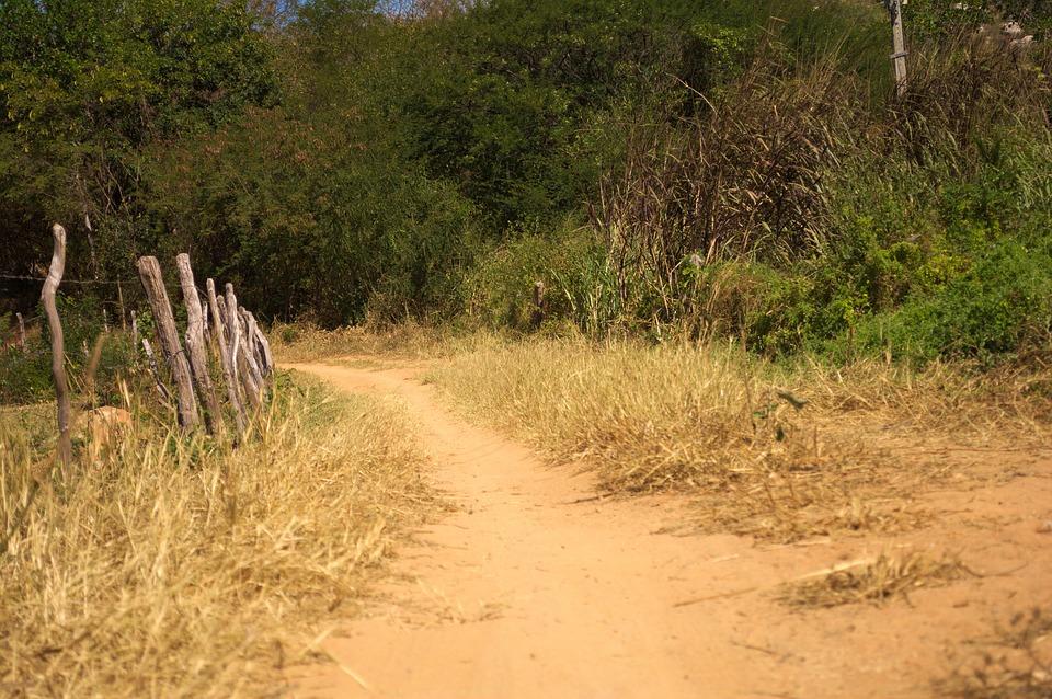 Rüyada Toprak Yolda Patikada Yürümek Görmek