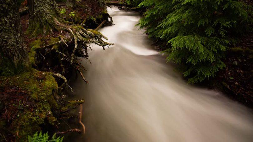 Rüyada Bulanık Nehir Görmek