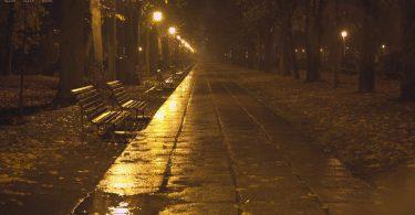 Rüyada Gece Yağmur Yağması