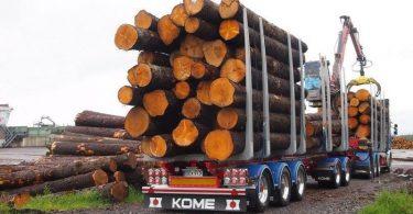 Rüyada Odun Taşıdığını Görmek