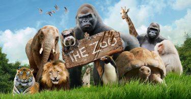 Rüyada Hayvanat Bahçesi Görmek