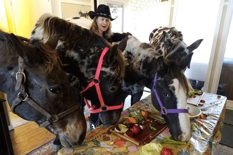 Rüyada Büyük Evde Siyah At Bindiğini Görmek