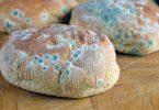 Rüyada Küflü Ekmek Yemek
