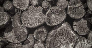Rüyada Odun Yığını Görmek