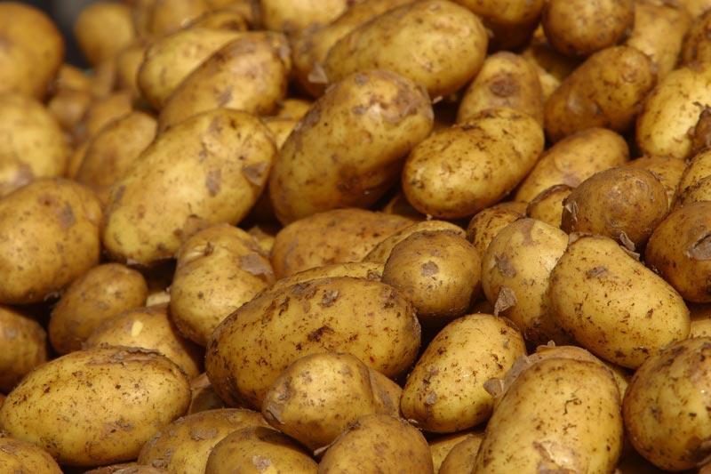 Rüyada Çuvalla Patates Aldığını Görmek