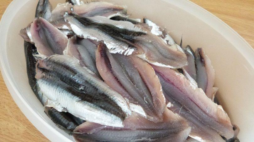 Rüyada Hamsi Balığı Görmek